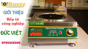 Giới thiệu Bếp từ Đức Việt một chảo kính BTDV1CK500 | Induction Cookers | Bếp  từ