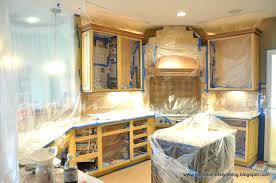 spray paint kitchen cabinets stylish nice kitchen ideas
