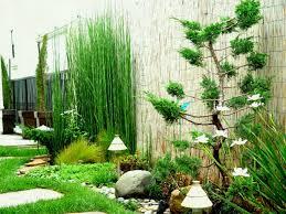 best indoor rock garden ideas indoor rock garden ideas o86 garden