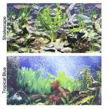 Aquarium Background Pictures Penn Plax Double Back Aquarium Background Tropical Blue