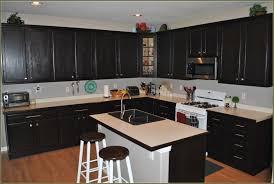 dark stained kitchen cabinets. Black Stained Kitchen Cabinets Lovely On Within Cabinet Restaining Darker Staining Oak 12 Dark S
