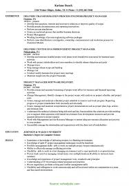 Special Project Manager Resume 2014 Delivery Manager Project