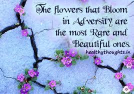 Beautiful Quotes About Life And Flowers Best Of Theflowersthatbloominadversityarethemostrareandbeautiful