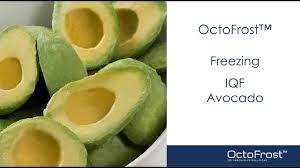Octofrost Frozen Iqf Fruit Avocado