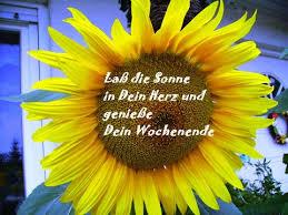 Sommer Blume Spruch Grußkarten E Cards Postkarten Sommer