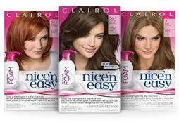 Clairol Nice N Easy Foam Hair Color 6 5g Lightest Golden Brown 1 Kit Packaging May Vary