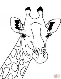 Coloring Pages Giraffe Coloring Page Free Printable Pages Head