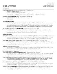 essay format examples life