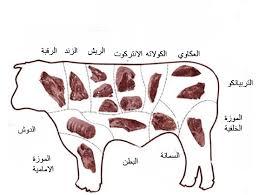 قطعيات اللحم البحري واستخداماتها بنات حوا