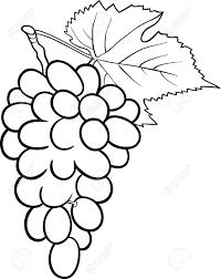 black and white grapes clipart. Plain Grapes Grapes Clipart Black And White Beautiful To And