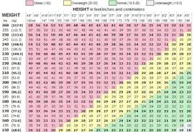 here is the bmi chart for healthy s pink obese yellow overweight green normal