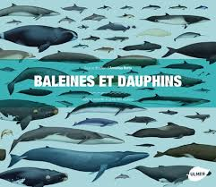 Baleines Et Dauphins Histoire Naturelle Et Guide Des Especes Whales Dolphins And Porpoises A Natural History And Species Guide
