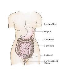 Entzündung enddarm symptome