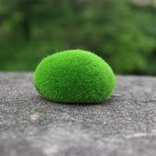 Decorating With Moss Balls 100Pcs Artificial Fresh Moss Balls Green Plant Stones Home Party 48