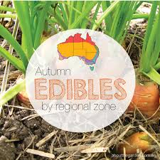 garden planting. autumn edibles, vegetables, herbs and fruit guide by regional zone australia gardening garden planting n