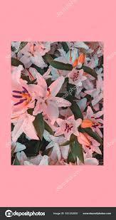 Fashion Aesthetic Wallpaper Phone Pink ...