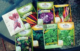 fall garden vegetables. fall garden vegetables - seeds