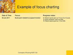 Iv Charting Example Documentation And Reporting Ppt Download