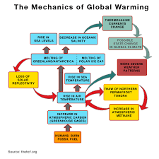 Flow Chart Of Causes Of Global Warming Report 3 How Do Greenhouse Gases Cause Global Warming
