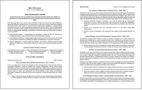 One Page Executive Resume Free Resume Example And Writing Download