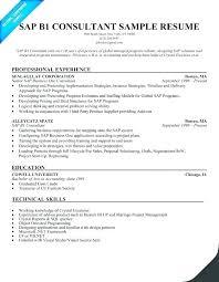 Strategic Consultant Sample Resume Enuri Co