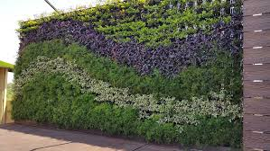 Small Picture Vertical Gardens Gardening Ideas