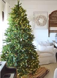 King Fraser Fir Quick-Shape Christmas Tree   King Of Christmas