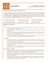 Professional Sales Resume Sales Expert Resume