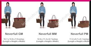 Louis Vuitton Size Chart Bag How To Choose A Bag Organizer For Your Louis Vuitton