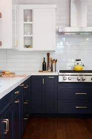 Dark Blue Cabinets Beautiful Have You Considered Using For Your ...
