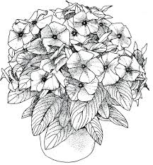 free printable flower coloring pages for adults. Plain For New Orange Blossom Flower Coloring Sheet Collection 6q   Page Free In Printable Pages For Adults A