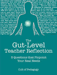 best teacher collegiality images educational  the gut level teacher reflection