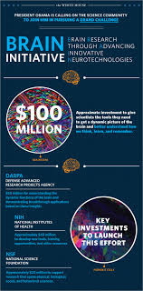 Big Ideas In Biology Chart Answers 40 Infographic Ideas To Jumpstart Your Creativity Visual