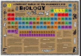Biology Charts And Posters Biology Periodic Table