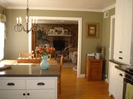 olive green painted kitchen