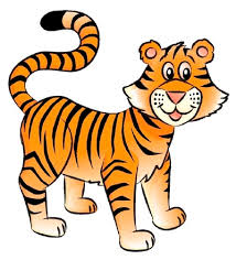 tiger drawing pictures. Modren Drawing Tiger Image Gallery Learn How To Draw A Tiger In Only Six Steps Itu0027s Easy Inside Drawing Pictures