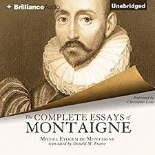 montaigne essays sparknotes tips for crafting your best essays  montaigne essays sparknotes 8 tips for crafting your best essays montaigne sparknotes com
