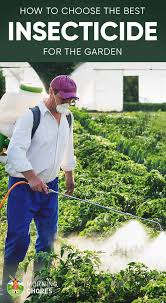 garden insecticide. If You Are An Organic Gardener Who Is Concerned About Toxic Chemicals And Would Prefer Eco-friendly Option, A Botanical Insecticide Can Act Quickly To Garden