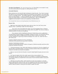 Resume Profile For College Student Resume Summary For College Student Objective For College