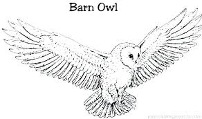 Barn Coloring Pages To Print Page Owl Colouring Co Wiegraefeco