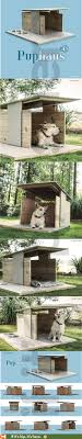 Dog Digs to Love: The Puphaus by Pyramd Design Co - if it's hip, it's here