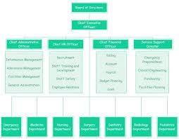 Hospital Org Chart Examples Org Charting Organizational