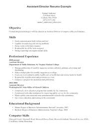 Resume Skills Examples Cool Profile Examples For Resume Simple Resume Format