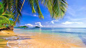 Hd Wallpaper Tropical Beach - Novocom.top