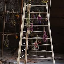 shaker herb drying rack gardenista jpg
