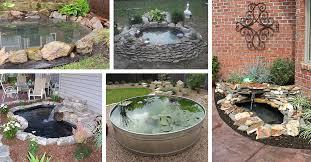 Build A Pond In Backyard Design