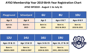 Us Youth Soccer Birth Year Chart Soccer Age Group Calculator Pass Area Ayso Region 641