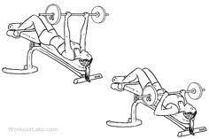 Decline Barbell Bench Press U2022 Bodybuilding WizardDecline Barbell Bench