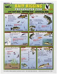 Waterproof Fishing Chart Freshwater Bait Rigging Bass