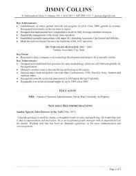 Sales Director Resume Magnificent Director Of Sales Resume